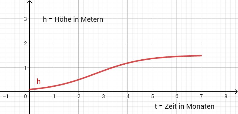 Skizze der Funktion h