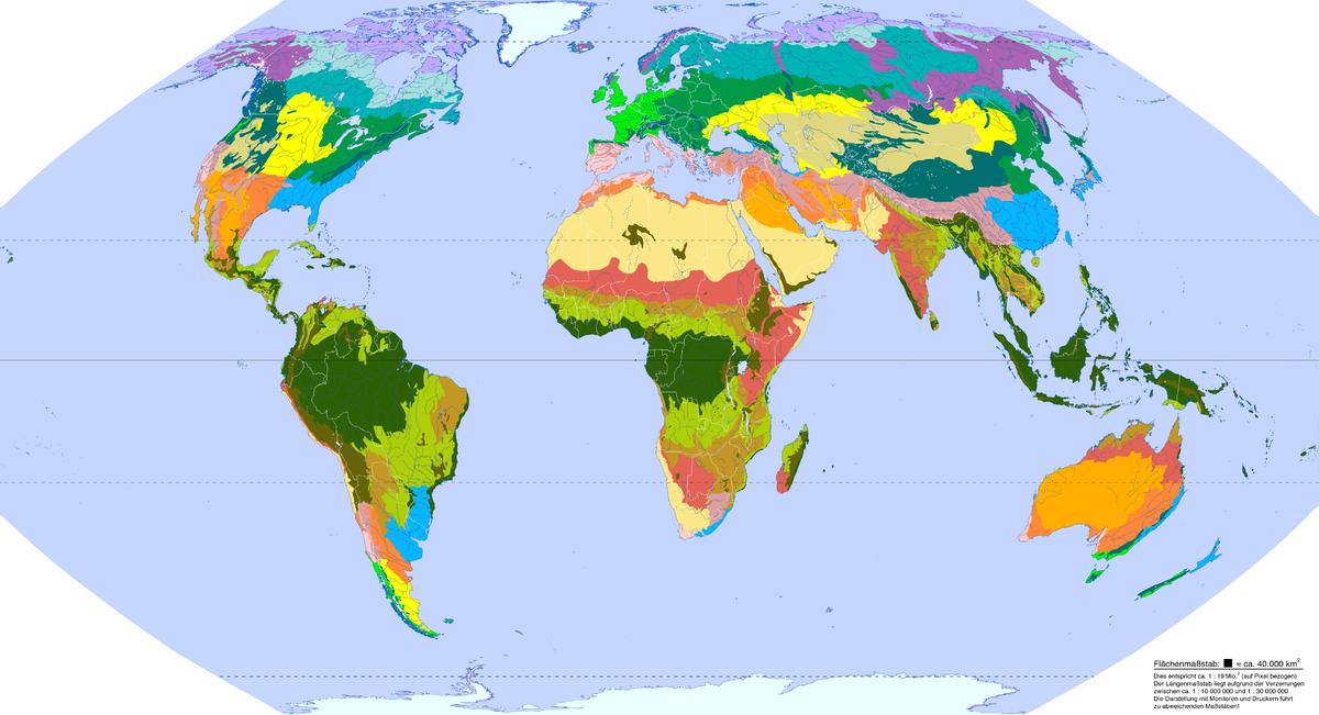 globalE Karte von Landschaftszonen