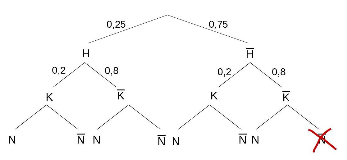 Baumdiagramm mit der Hälfte der Wahrscheinlichkeiten