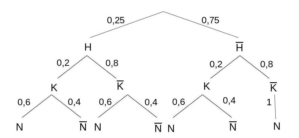 Lösung: Baumdiagramm