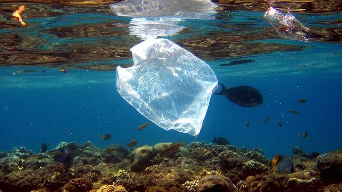 Mülltüte im Meer
