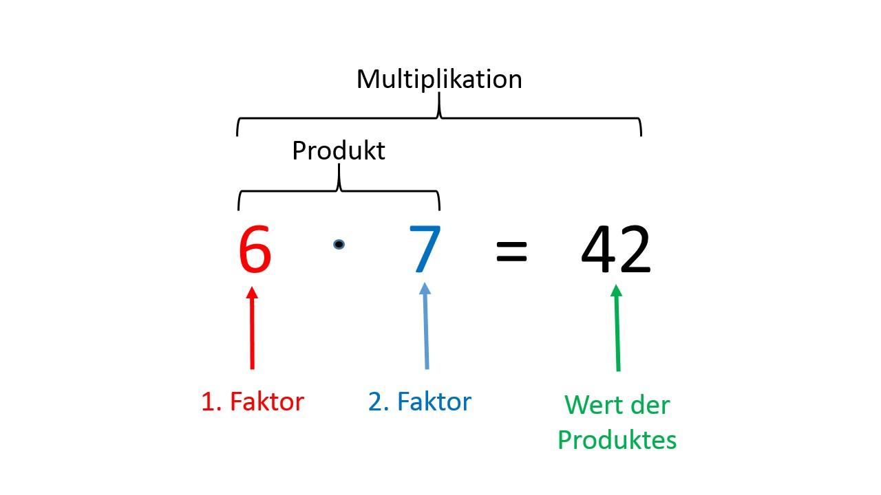 Multiplikation - Mathe Artikel » Serlo.org