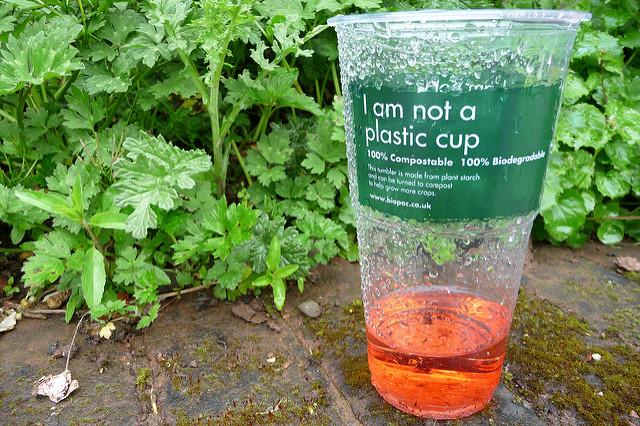 Bioplastikbecher