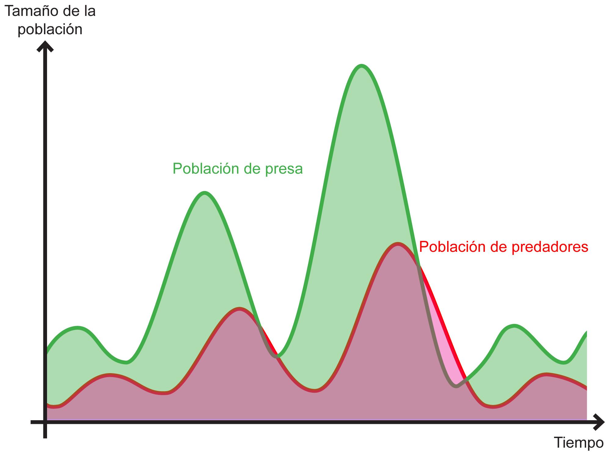 Desarrollo de la población de predadores y presas