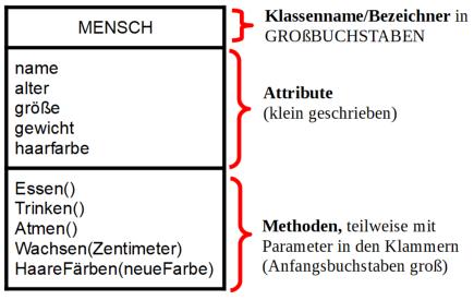 Beispiel für Klassenkarte zu MENSCH (selbsterstellt)