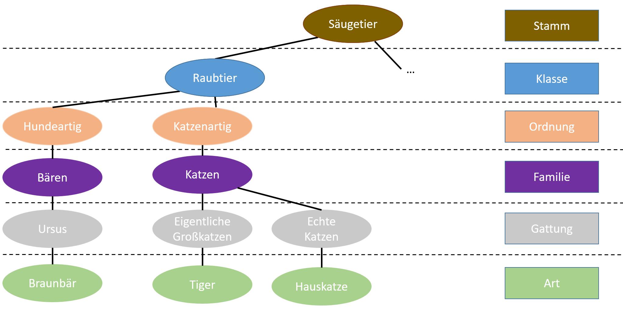 Kategorien mit Baum