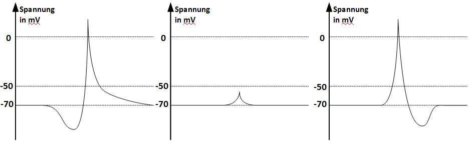 Zeitliche Änderung der Spannung in Millivolt bei einer Spannungserhöhung um 90 Millivolt