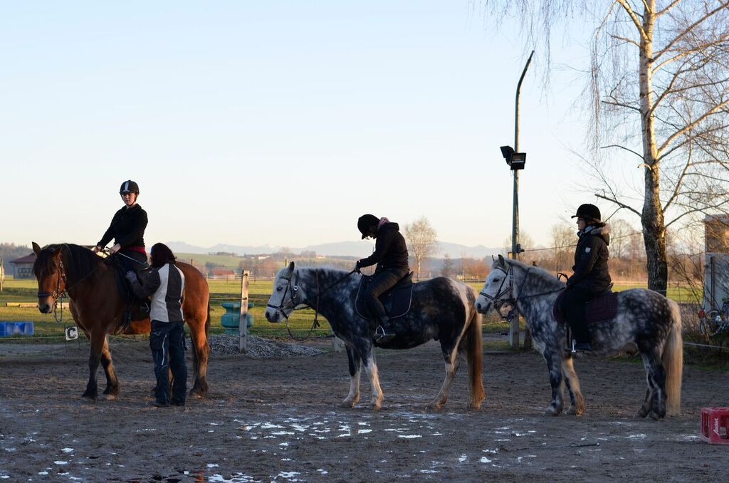 Pferderitt