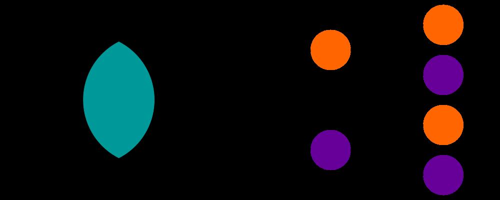 Grundbegriffe und Methoden, Schnittmenge und Baumdiagramm