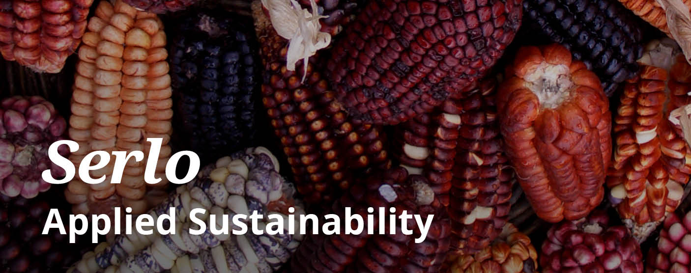 Serlo Sustainability Header