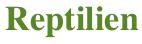 Reptilien Zeichenkette