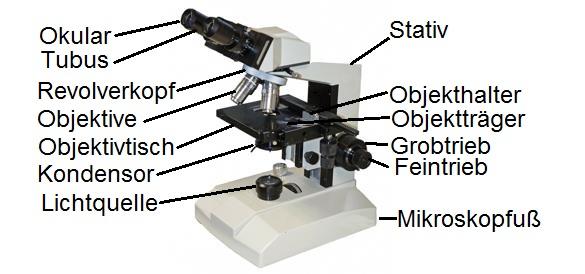 Mikroskop mit Beschriftung