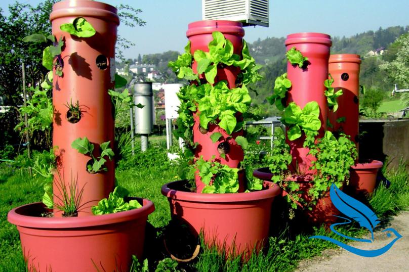 Salatturm zum selbst bauen