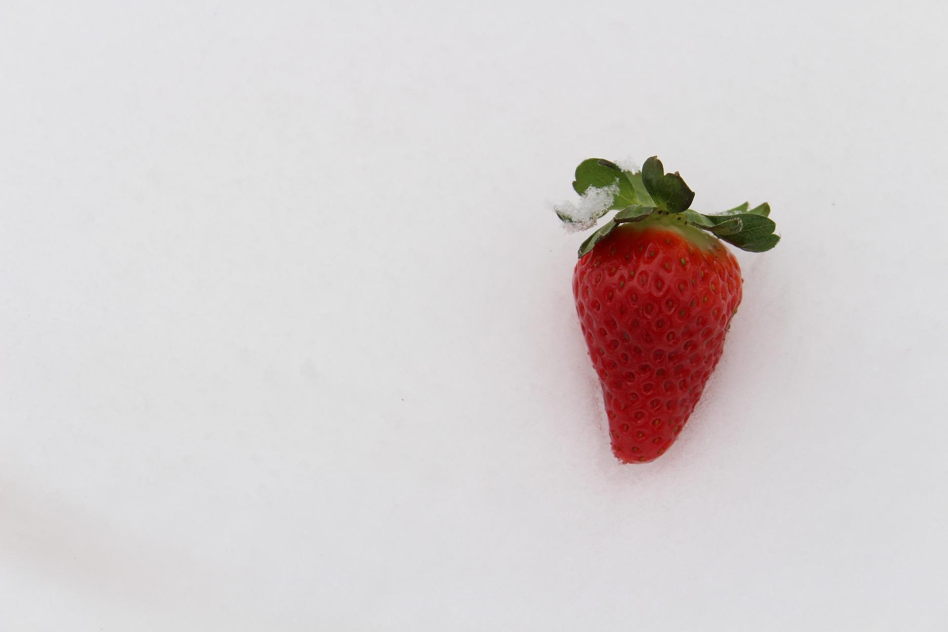 Erdbeere im Schnee